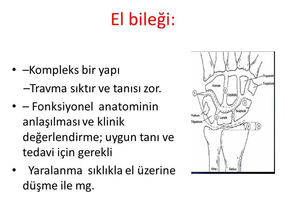 El bileği: –Kompleks bir yapı –Travma sıktır ve tanısı zor.