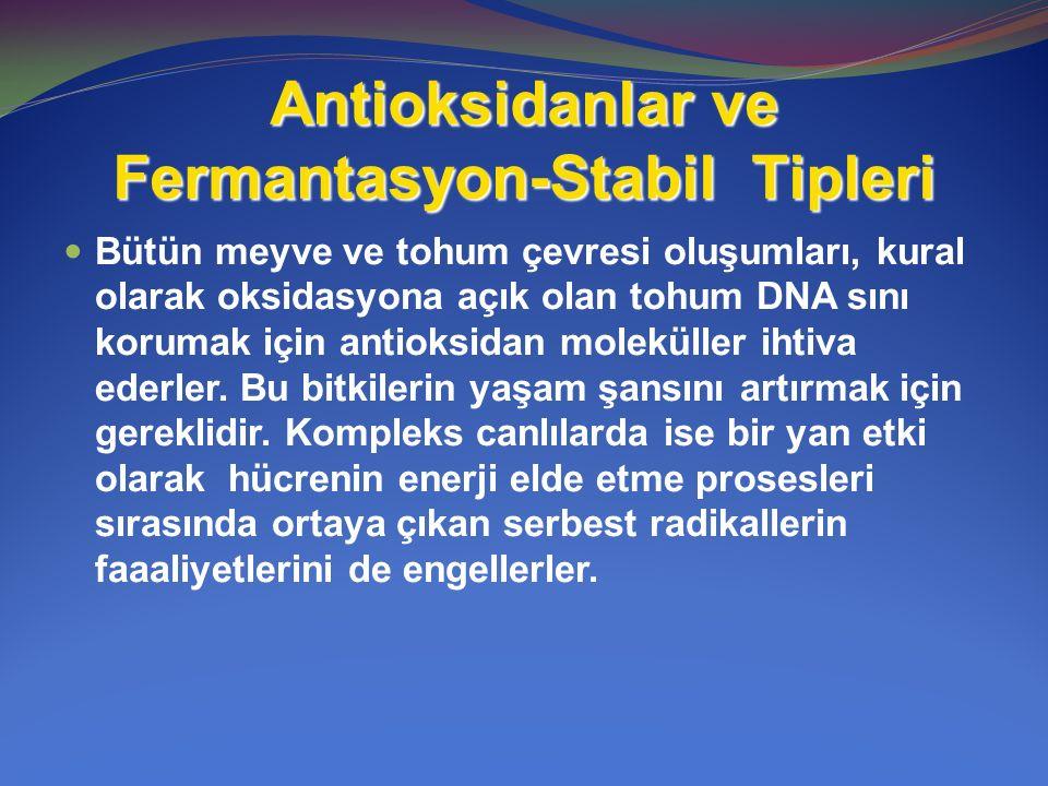 Antioksidanlar ve Fermantasyon-Stabil Tipleri