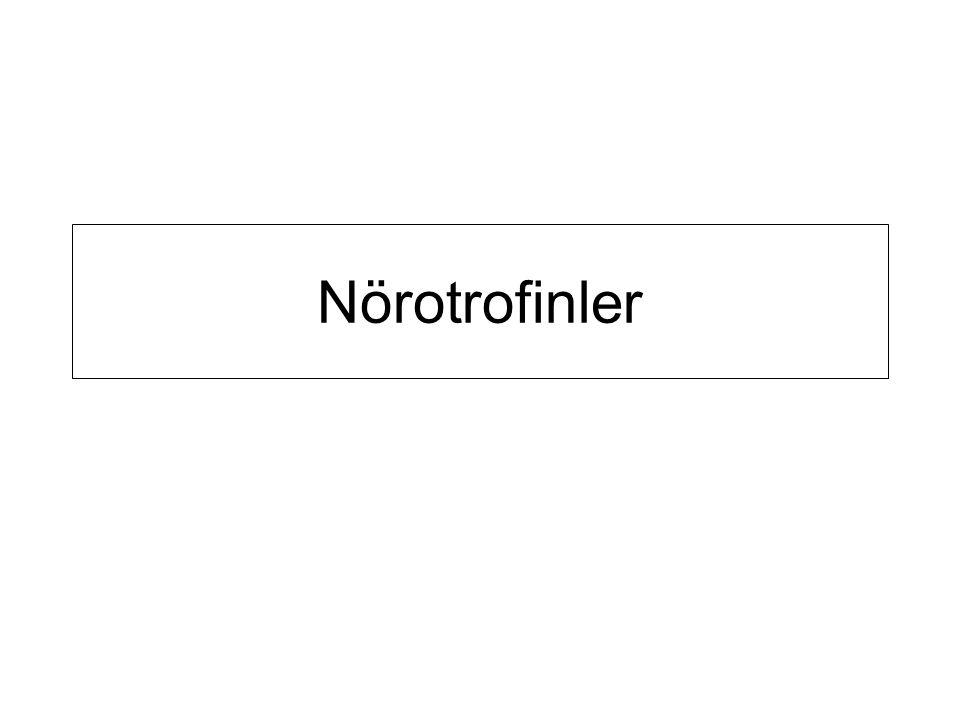 Nörotrofinler