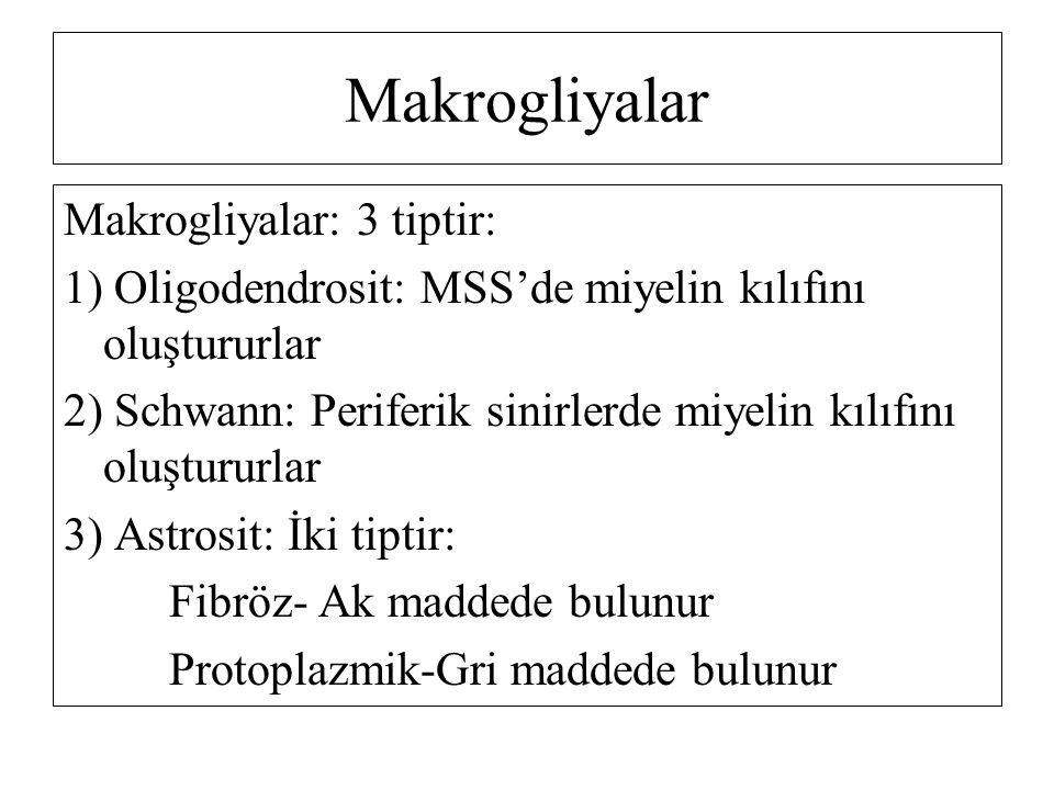 Makrogliyalar