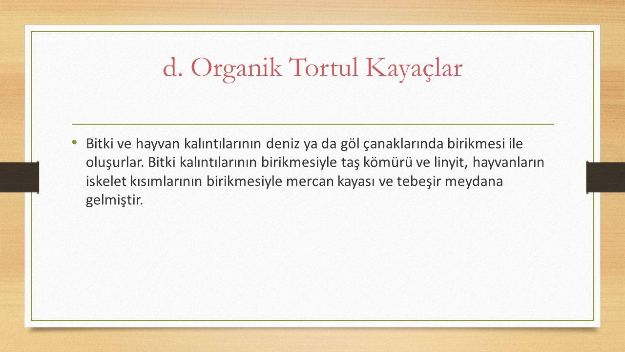d. Organik Tortul Kayaçlar