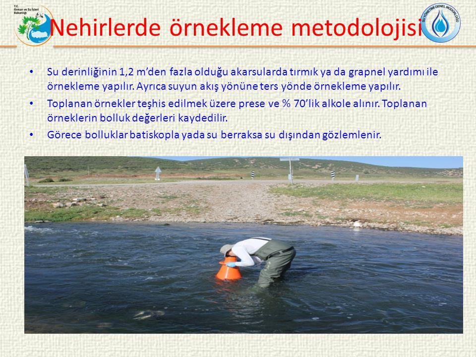 Nehirlerde örnekleme metodolojisi