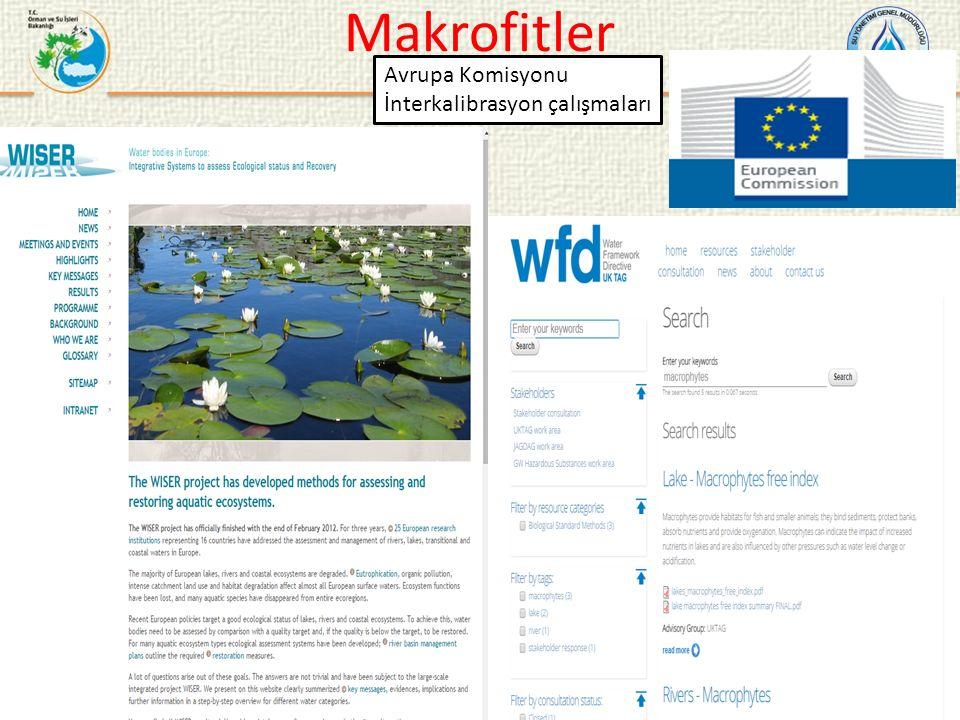 Makrofitler Avrupa Komisyonu İnterkalibrasyon çalışmaları