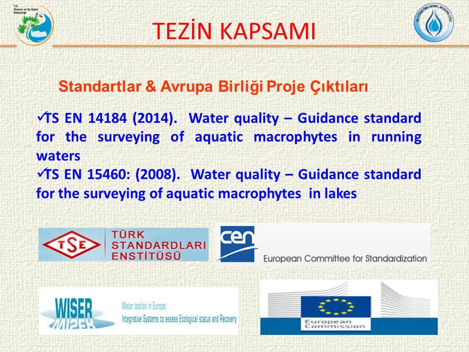 TEZİN KAPSAMI Standartlar & Avrupa Birliği Proje Çıktıları