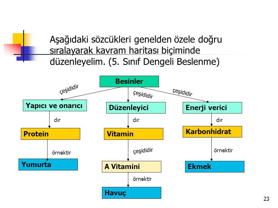 Aşağıdaki sözcükleri genelden özele doğru sıralayarak kavram haritası biçiminde düzenleyelim. (5. Sınıf Dengeli Beslenme)