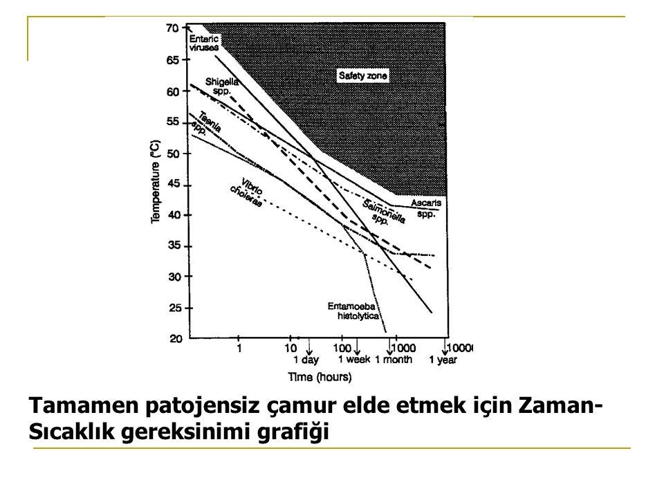 Tamamen patojensiz çamur elde etmek için Zaman-Sıcaklık gereksinimi grafiği