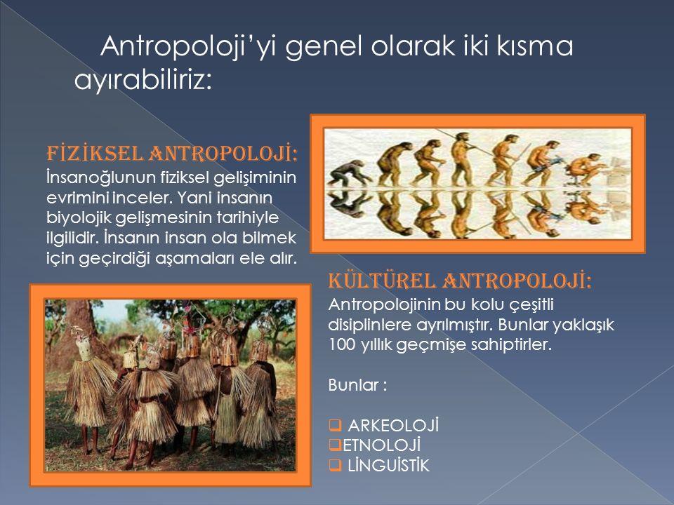 Antropoloji'yi genel olarak iki kısma ayırabiliriz: