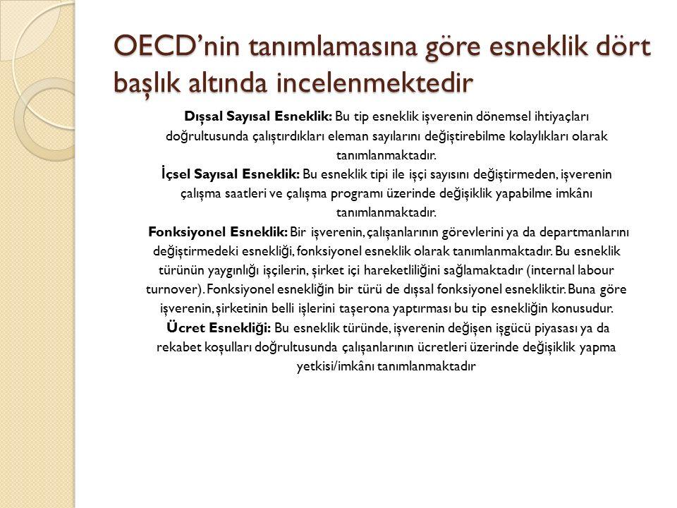 OECD'nin tanımlamasına göre esneklik dört başlık altında incelenmektedir