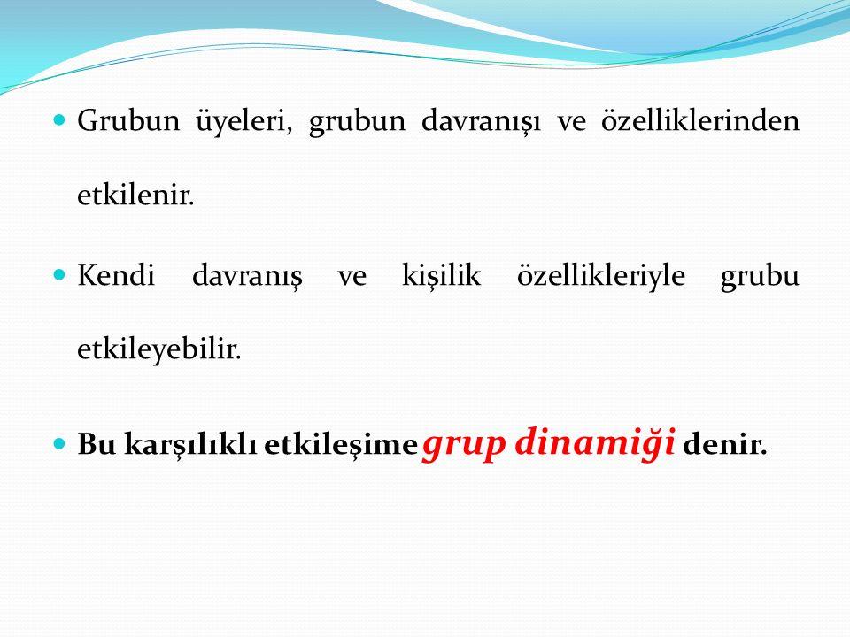 Grubun üyeleri, grubun davranışı ve özelliklerinden etkilenir.
