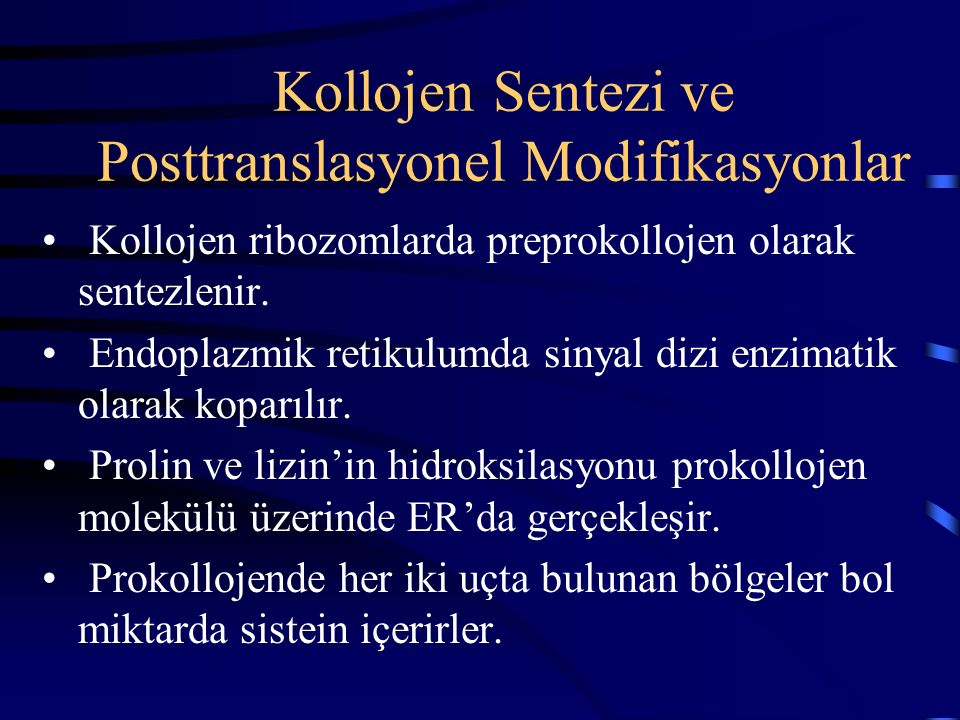 Kollojen Sentezi ve Posttranslasyonel Modifikasyonlar