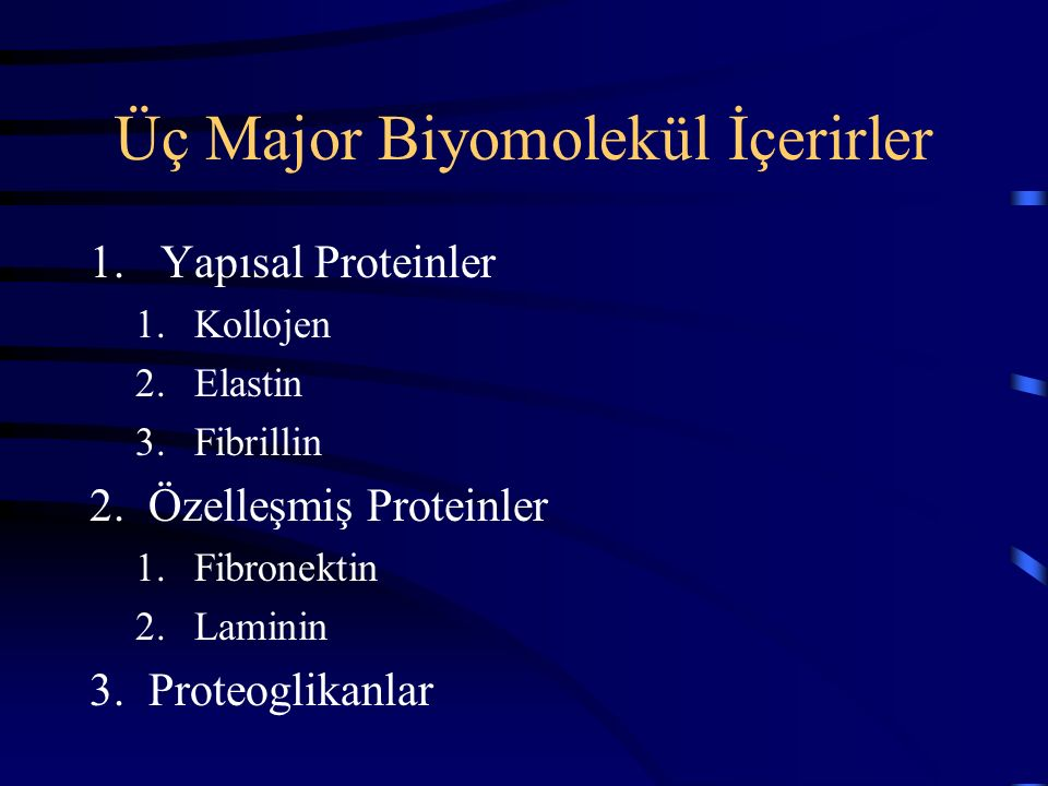 Üç Major Biyomolekül İçerirler
