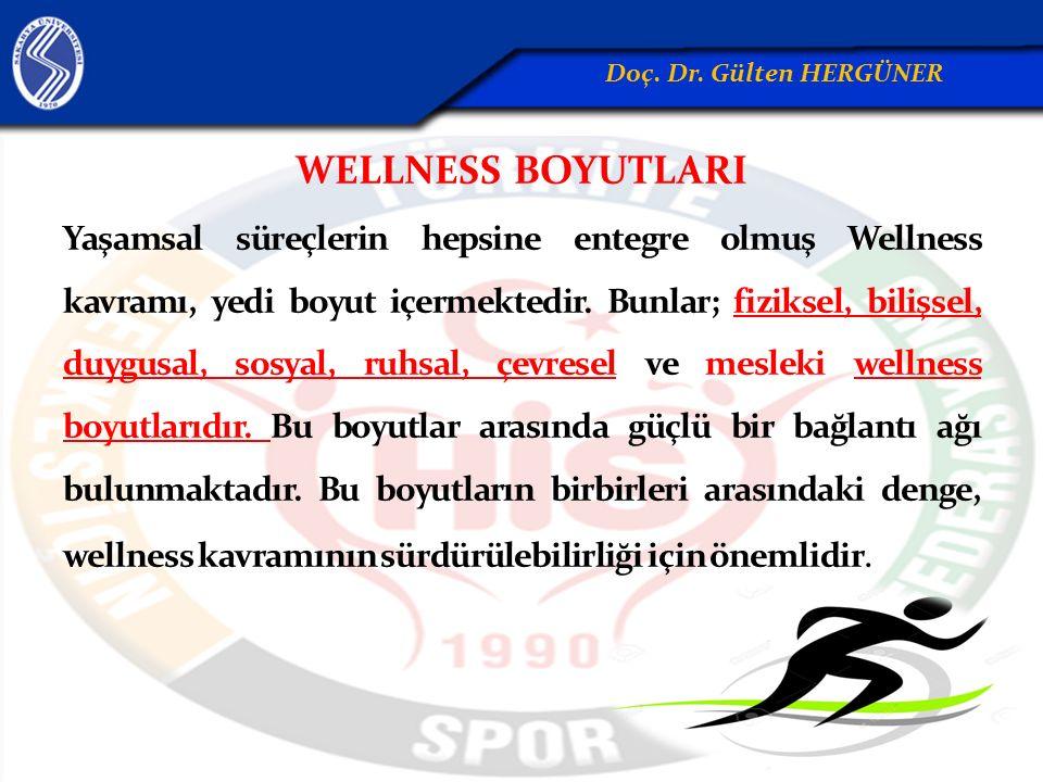WELLNESS BOYUTLARI