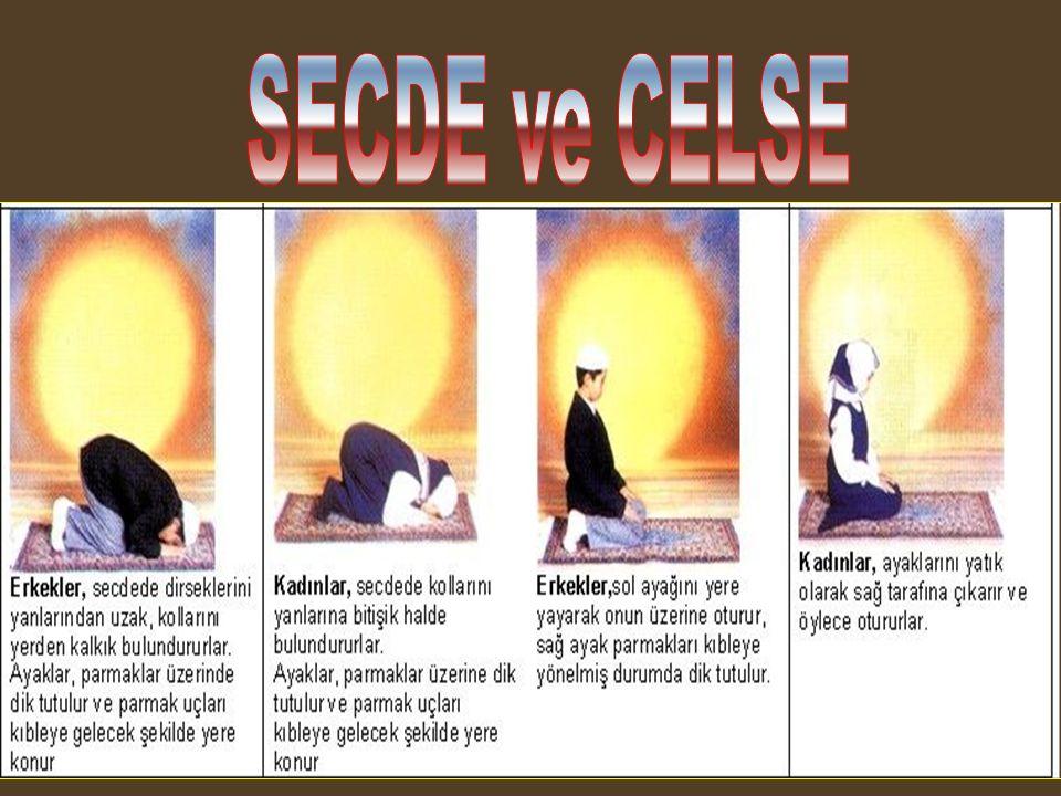 SECDE ve CELSE