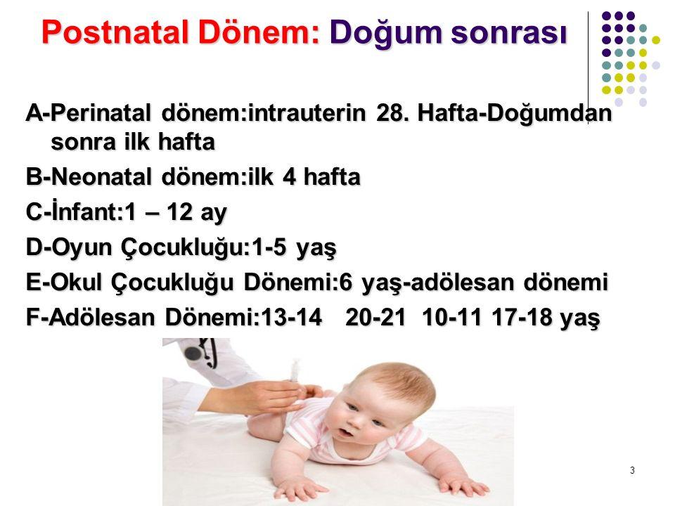 Postnatal Dönem: Doğum sonrası