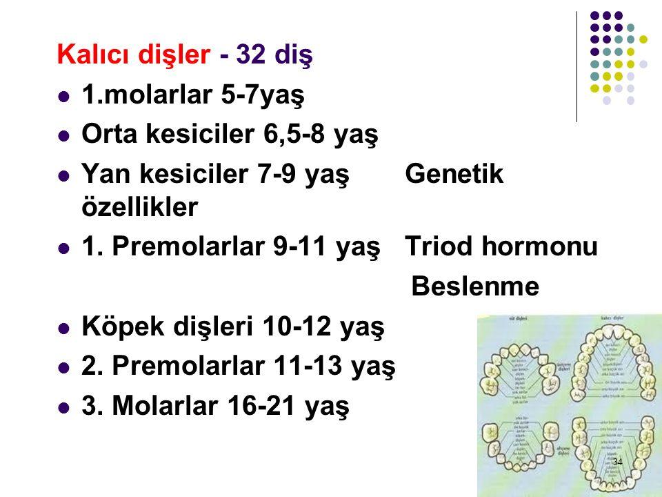 Kalıcı dişler - 32 diş 1.molarlar 5-7yaş. Orta kesiciler 6,5-8 yaş. Yan kesiciler 7-9 yaş Genetik özellikler.