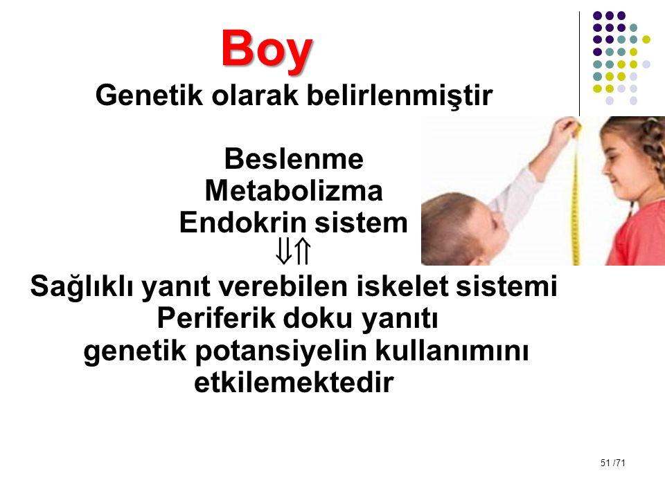 Boy Genetik olarak belirlenmiştir Beslenme Metabolizma Endokrin sistem