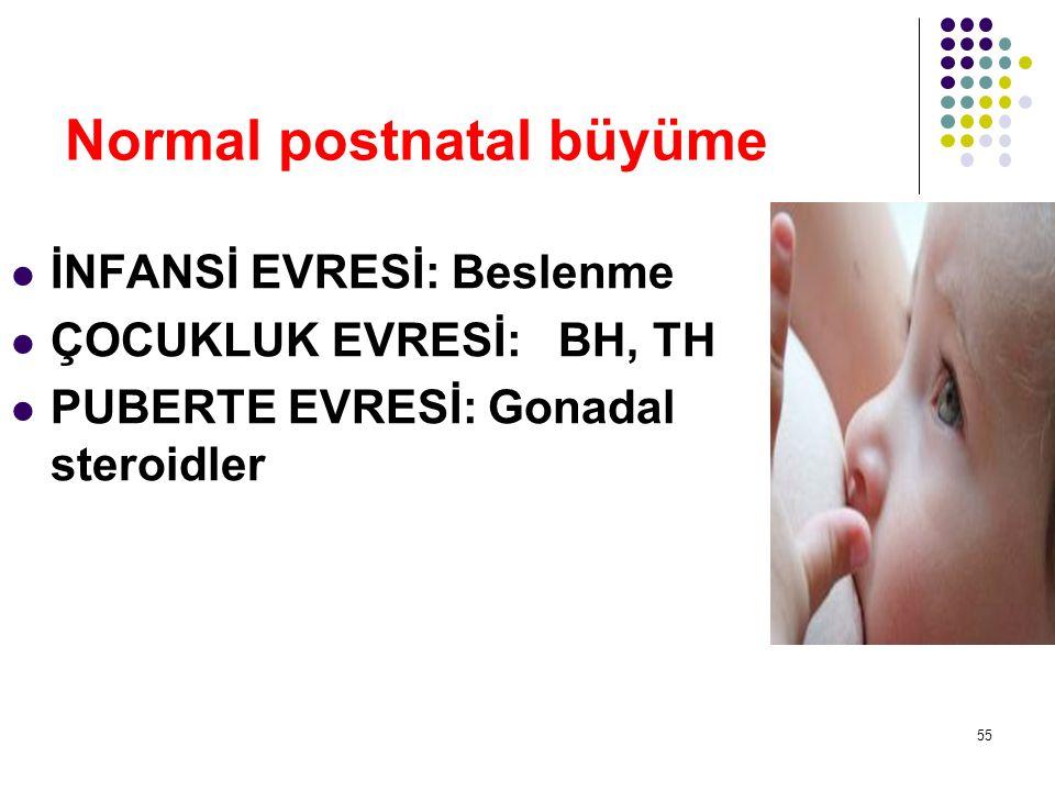 Normal postnatal büyüme