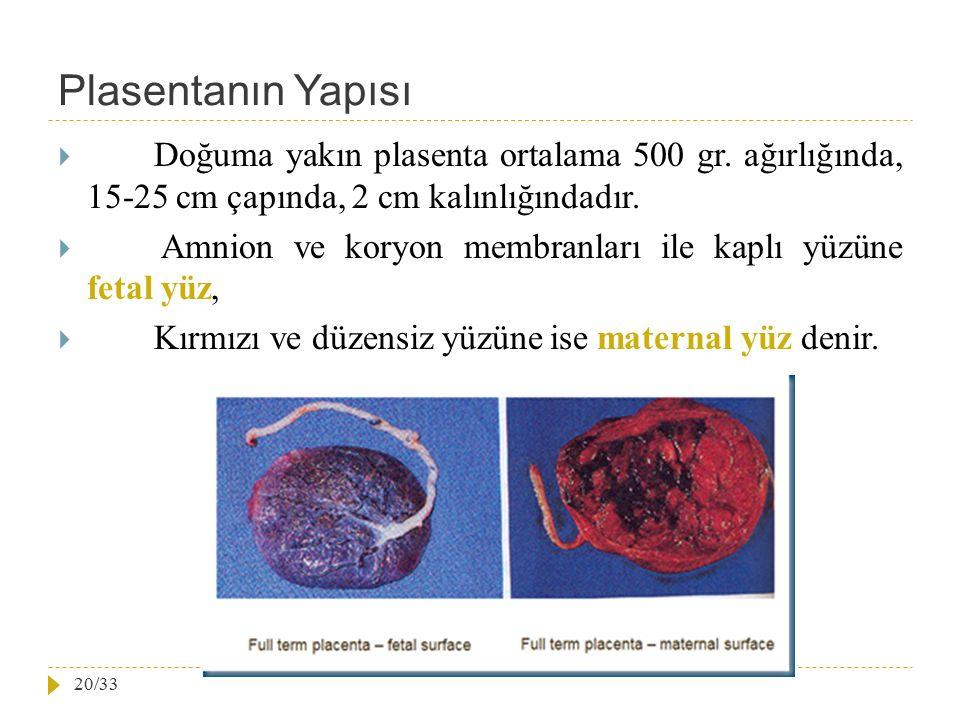 Plasentanın Yapısı Doğuma yakın plasenta ortalama 500 gr. ağırlığında, 15-25 cm çapında, 2 cm kalınlığındadır.