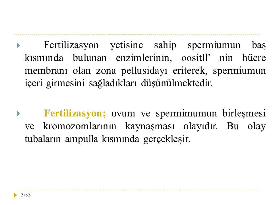 Fertilizasyon yetisine sahip spermiumun baş kısmında bulunan enzimlerinin, oositll' nin hücre membranı olan zona pellusidayı eriterek, spermiumun içeri girmesini sağladıkları düşünülmektedir.