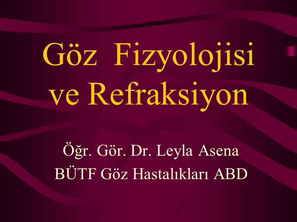 Göz Fizyolojisi ve Refraksiyon