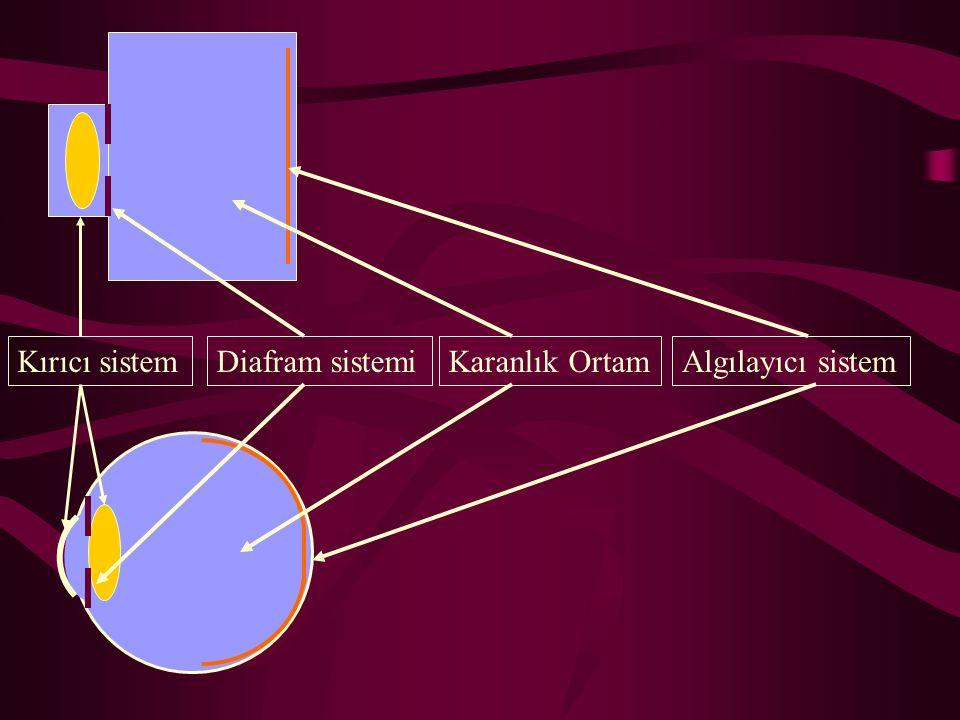 Kırıcı sistem Diafram sistemi Karanlık Ortam Algılayıcı sistem