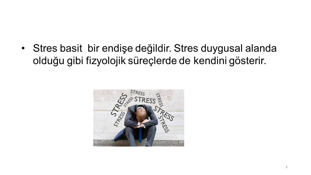 Stres basit bir endişe değildir