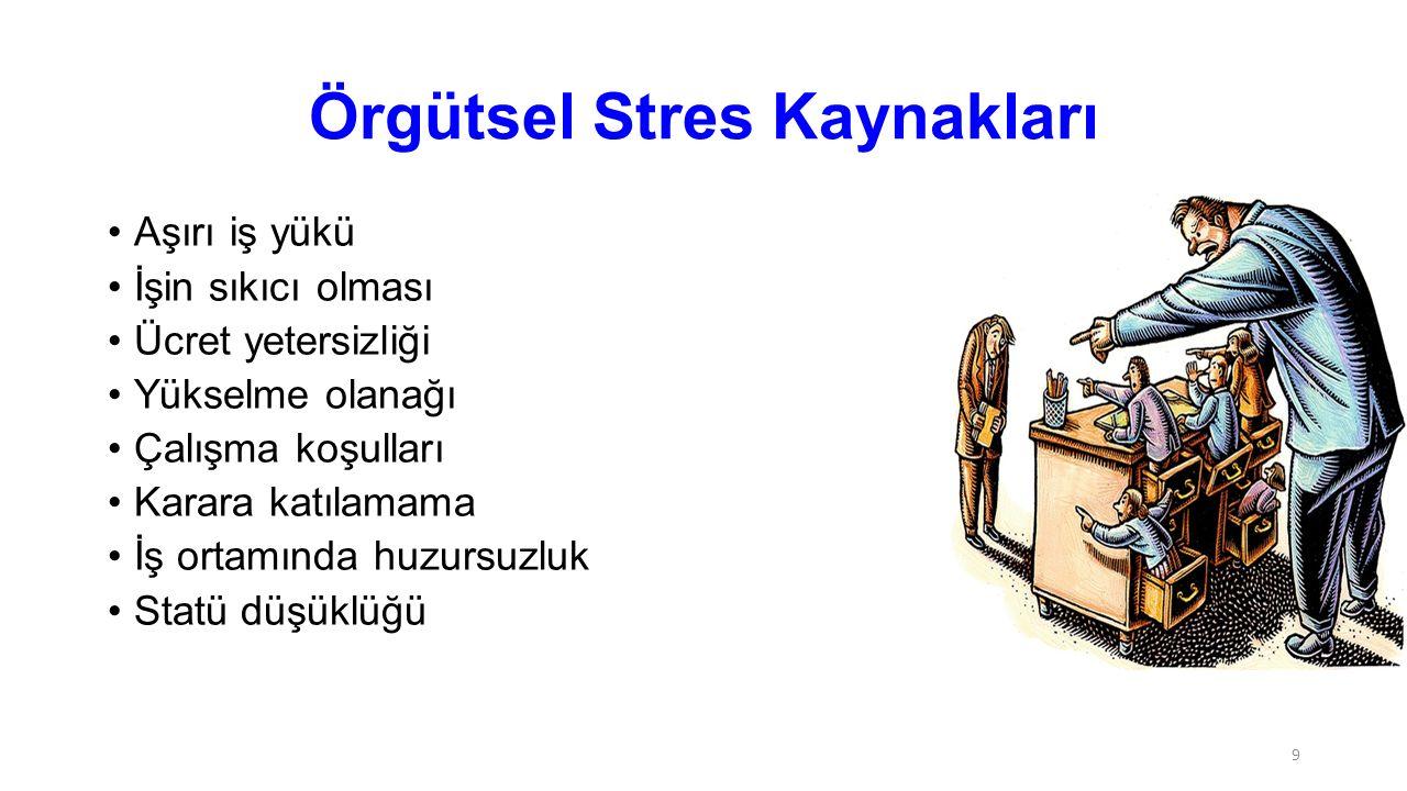 Örgütsel Stres Kaynakları