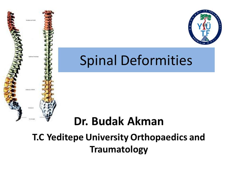 Dr. Budak Akman T.C Yeditepe University Orthopaedics and Traumatology
