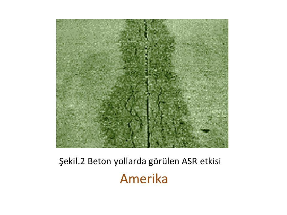 Şekil.2 Beton yollarda görülen ASR etkisi