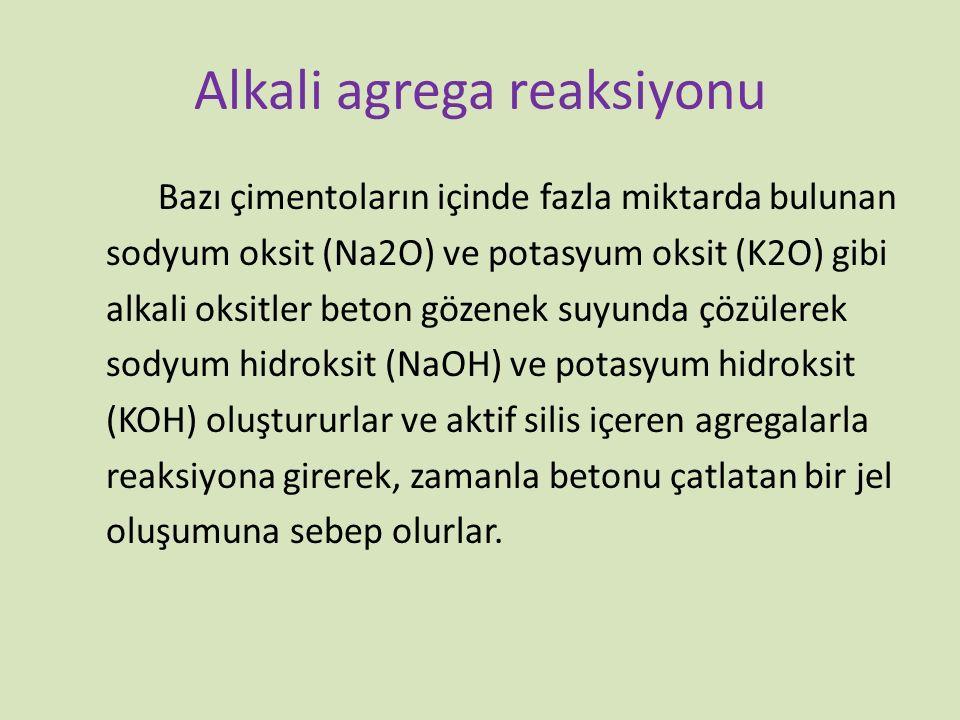 Alkali agrega reaksiyonu