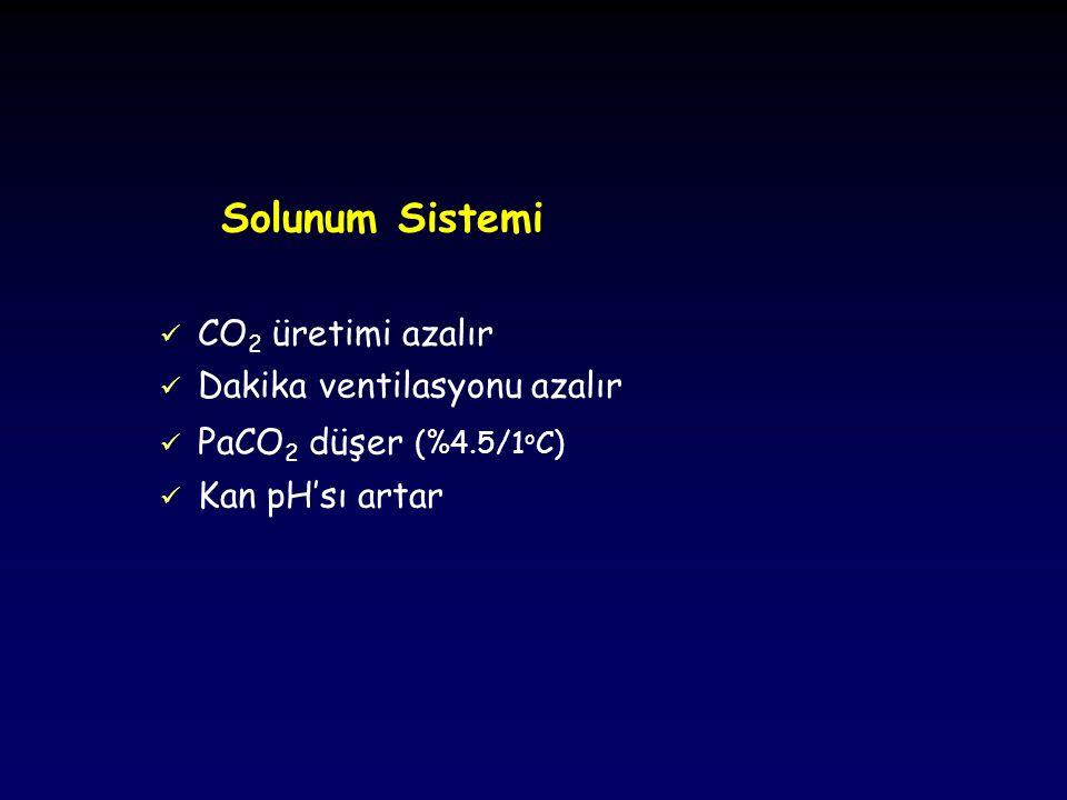 Solunum Sistemi CO2 üretimi azalır Dakika ventilasyonu azalır