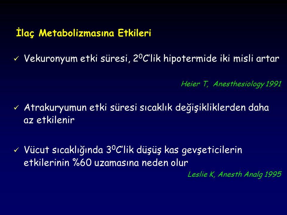 İlaç Metabolizmasına Etkileri