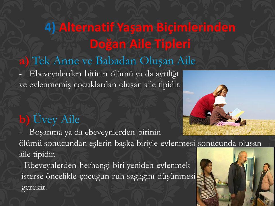 4) Alternatif Yaşam Biçimlerinden Doğan Aile Tipleri