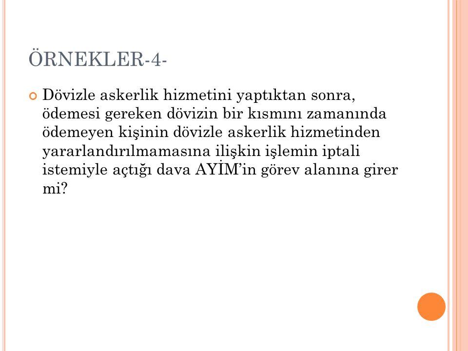 ÖRNEKLER-4-
