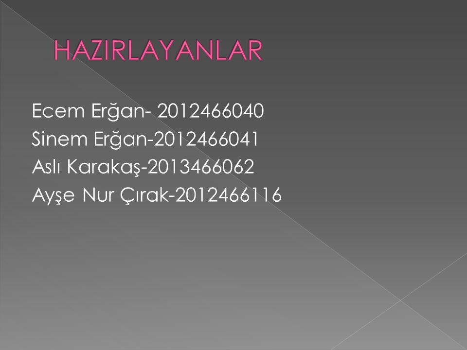 HAZIRLAYANLAR Ecem Erğan- 2012466040 Sinem Erğan-2012466041 Aslı Karakaş-2013466062 Ayşe Nur Çırak-2012466116