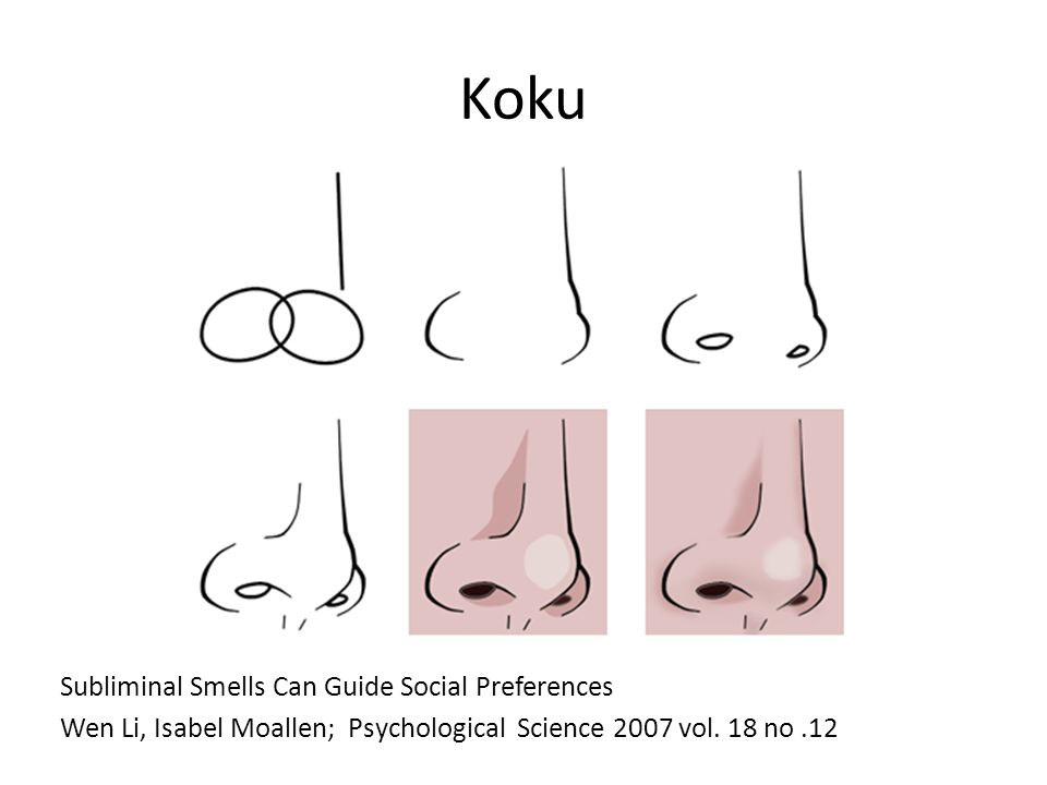 Koku Subliminal Smells Can Guide Social Preferences