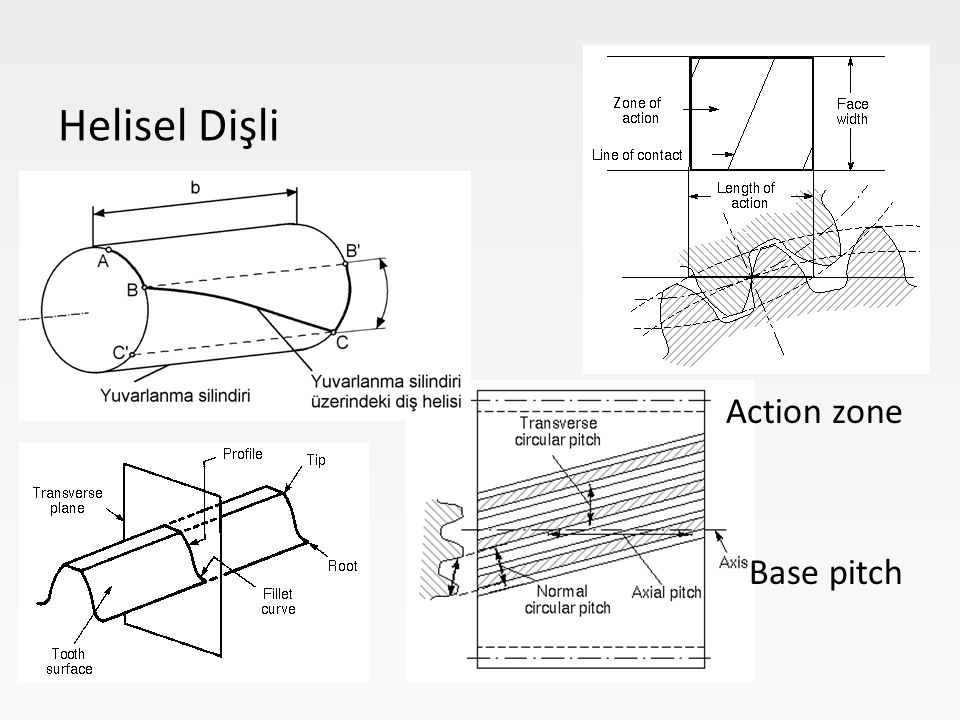 Helisel Dişli Action zone Base pitch