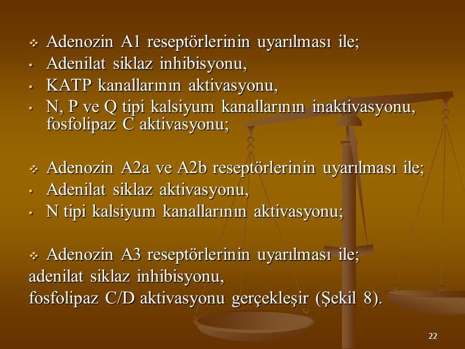 Adenozin A1 reseptörlerinin uyarılması ile;