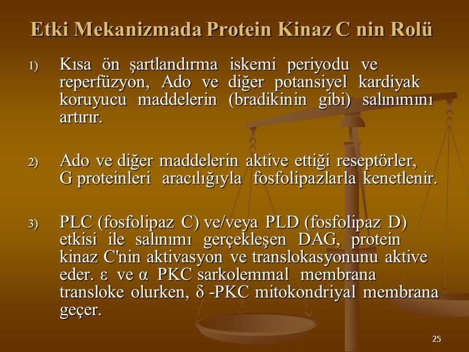 Etki Mekanizmada Protein Kinaz C nin Rolü