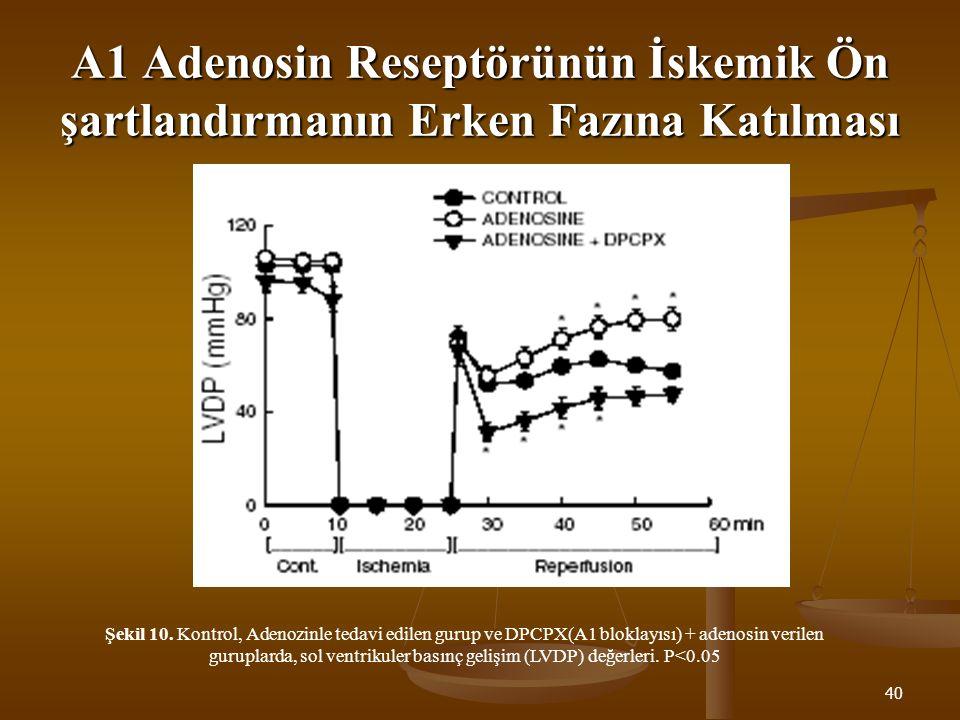 A1 Adenosin Reseptörünün İskemik Ön şartlandırmanın Erken Fazına Katılması