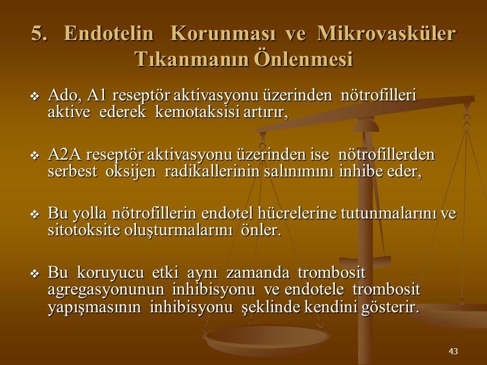 5. Endotelin Korunması ve Mikrovasküler Tıkanmanın Önlenmesi