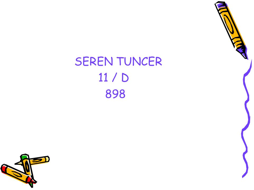 SEREN TUNCER 11 / D 898