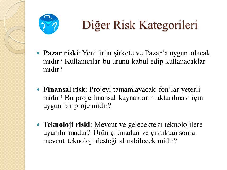 Diğer Risk Kategorileri