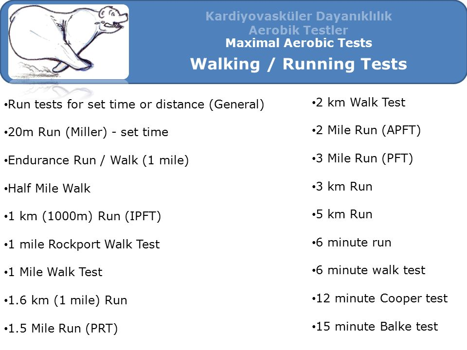 Kardiyovasküler Dayanıklılık Walking / Running Tests