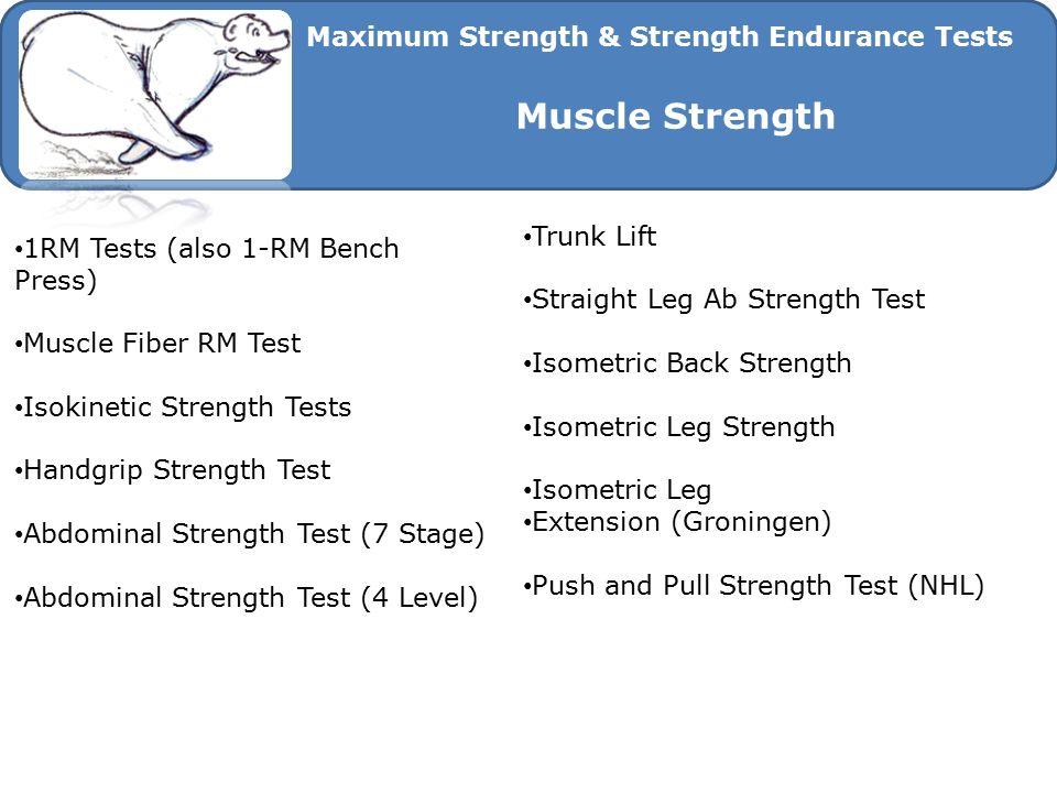 Muscle Strength Maximum Strength & Strength Endurance Tests Trunk Lift