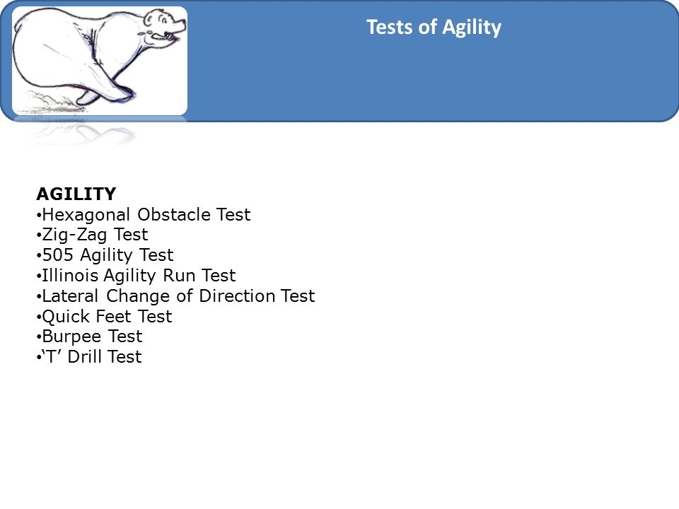 Tests of Agility AGILITY Hexagonal Obstacle Test Zig-Zag Test