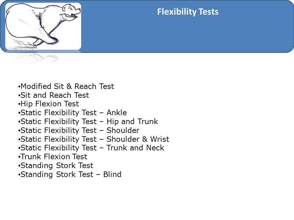 Flexibility Tests Modified Sit & Reach Test Sit and Reach Test