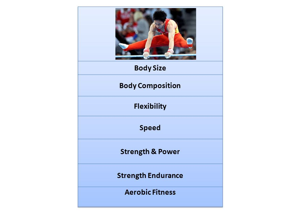 Body Size Body Composition Flexibility Speed Strength & Power Strength Endurance Aerobic Fitness