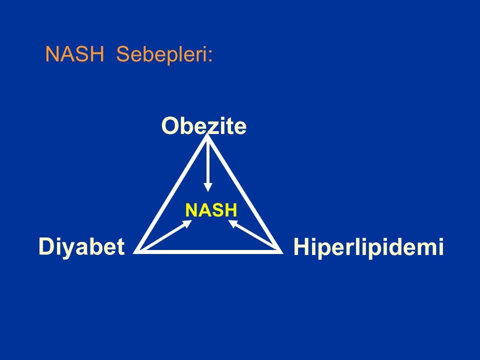 NASH Sebepleri: Obezite NASH Diyabet Hiperlipidemi