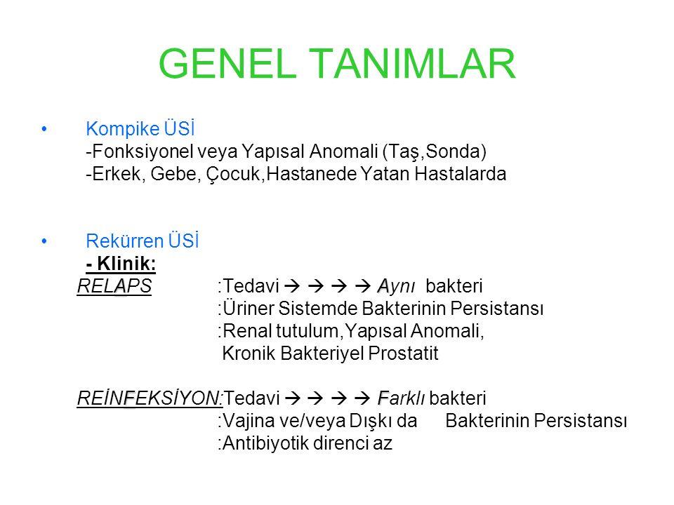 GENEL TANIMLAR Kompike ÜSİ